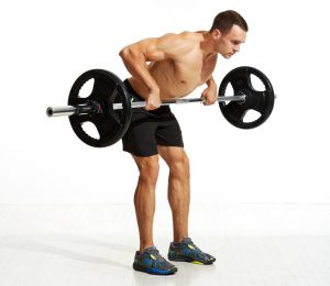 Bent Over Barbell Row Free Weights