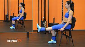 Single Leg Extension