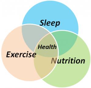 venn diagram on how sleep, exercise, and nutrition intersect