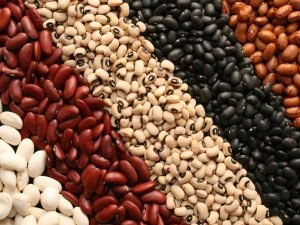 beans protein